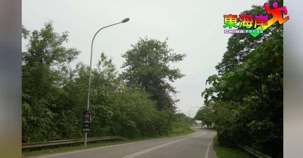 百乐县议会受促尽快修好失灵路灯,及修剪妨碍灯光的大树。