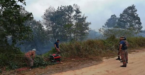 格宾大马海事执法机构后方林区,因天气炎热而引发野火燎原。